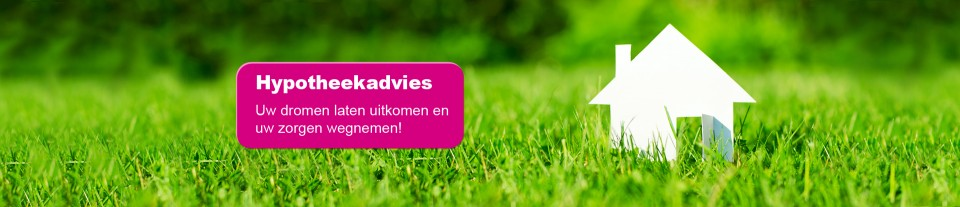 Banner-Houkes-Advies-2-e1371026707307
